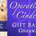 Suddenly Cinderella Series Gift Basket Giveaway!