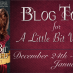 A Little Bit Wicked Blog Tour