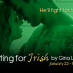 Fighting for Irish by Gina L. Maxwell virtual blog tour