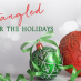 Entangled for the Holidays: All I Want For Christmas…Staff Edition